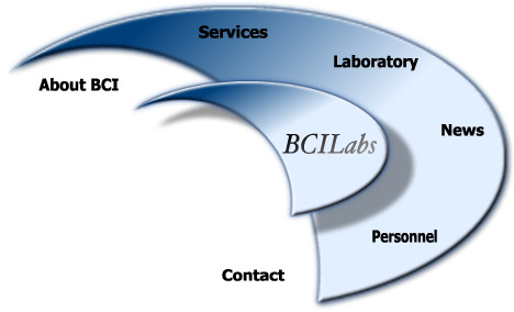 About BCI